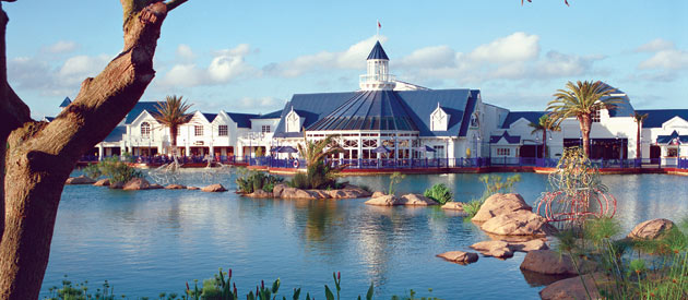 Your Guide to a Port Elizabeth Excursion